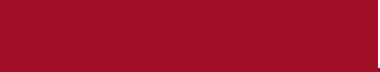 Vie Festival 2015 logo